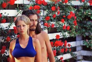 Rose Garden by Pattie Boyd